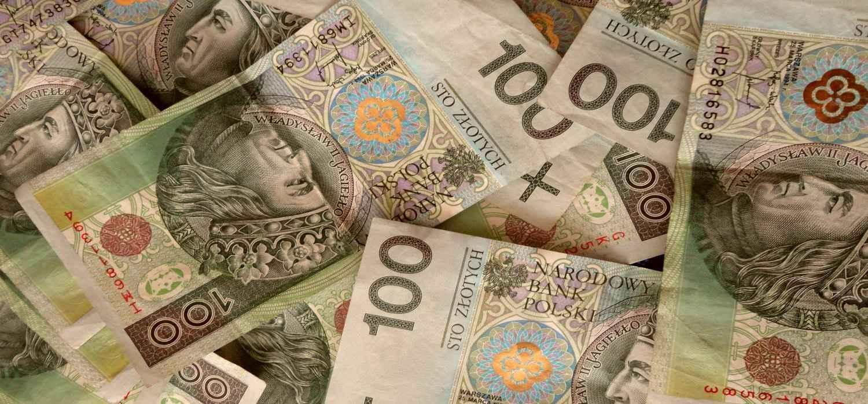 Купить польские злотые днепропетровск эстония какие деньги